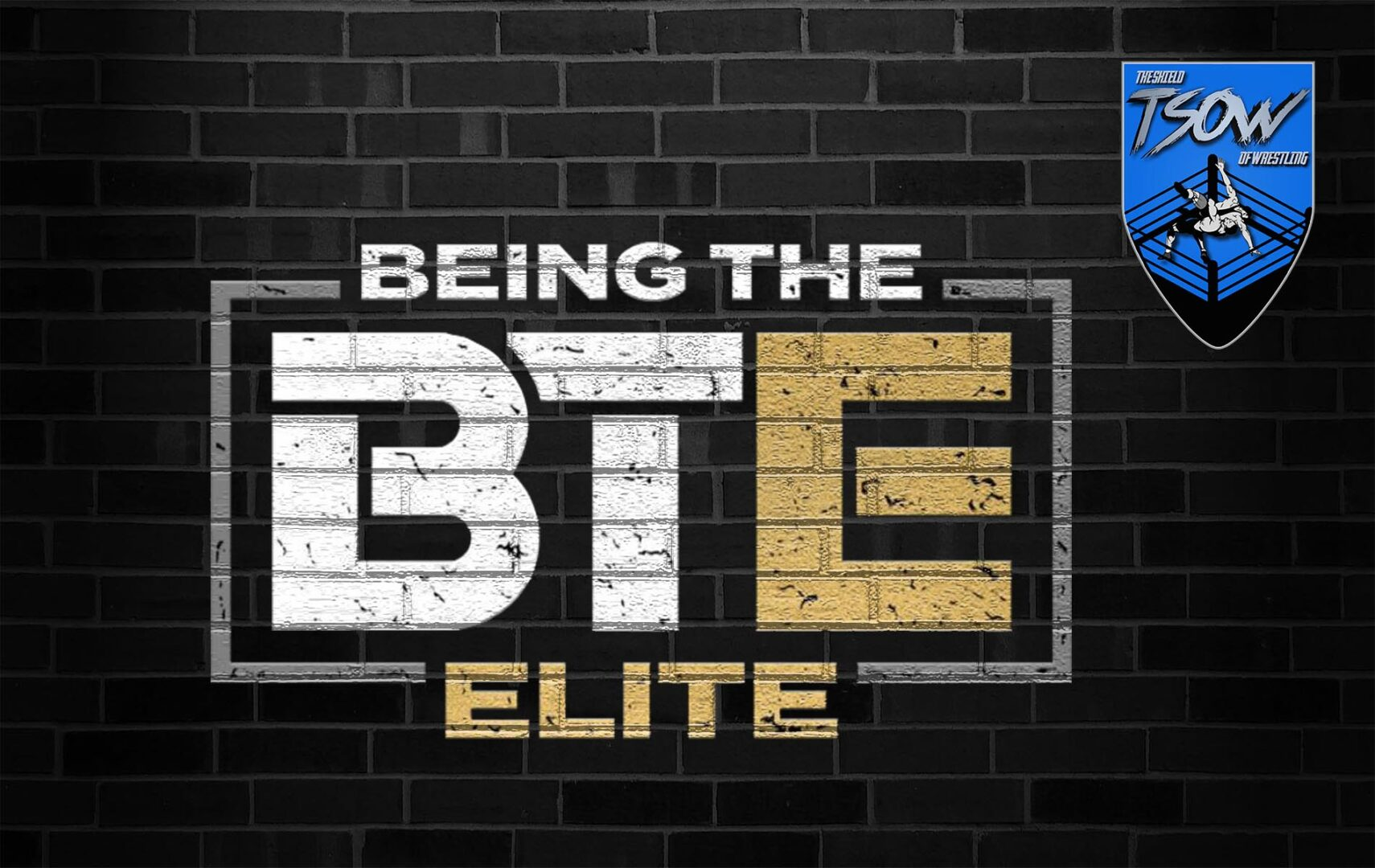 Report Being The Elite 267 The Elite Squad